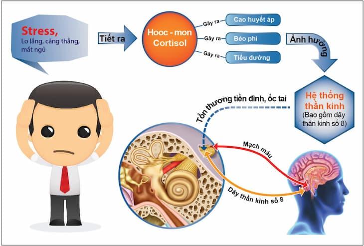 Cần xác định rõ những nguyên nhân gây bệnh