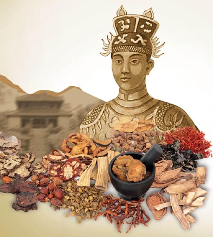 Vua Gia Long triều Nguyễn và những bài thuốc quý của Thái Y Viện